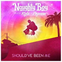 Naughty Boy - Should've been me
