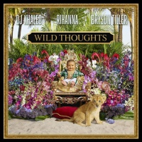 DJ Khaled feat. Rihanna - Wild Thoughts