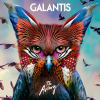 True Feeling - Galantis