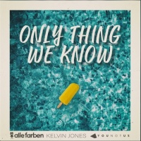 Alle Farben feat. Kelvin Jones and Younotus - Only Thing We Know