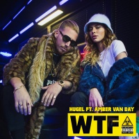 Hugel feat. Amber Van Day - WTF